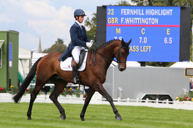 Fernhill Highlight and Francis Whittington during the dressage phase of the Land Rover Burghley Horse Trials 2015 Photo by Samantha Clark