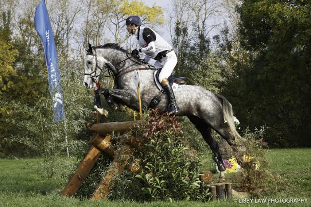 William Fox-Pitt and Reinstated at Le Lion d'Angers. Photo by Libby Law Photography.