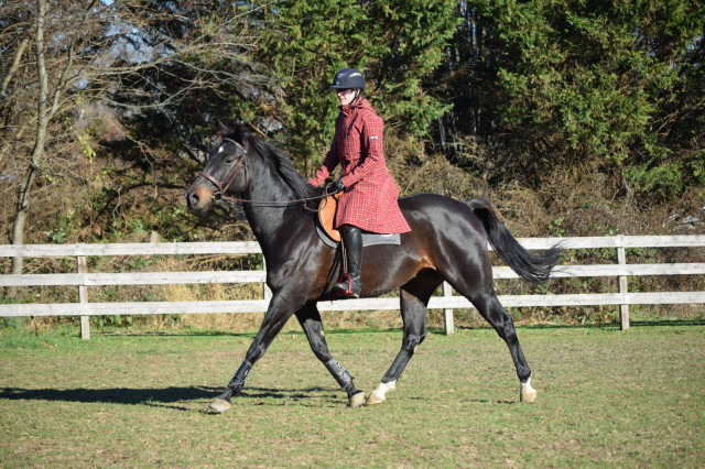 The Coach's Coat features a row of three snaps that can be unfastened to allow a back gusset to expand and fit nicely over the saddle while riding. Photo by Lorraine Peachey.