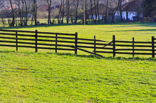 Old wooden broken fence and green grass