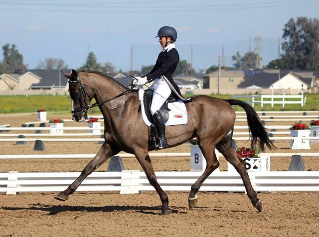 Winners of the inaugural Advanced division at FCHP, Jennifer McFall and her Holsteiner gelding, High Times, strutting their stuff in sandbox. Photo by Gina Pearson.