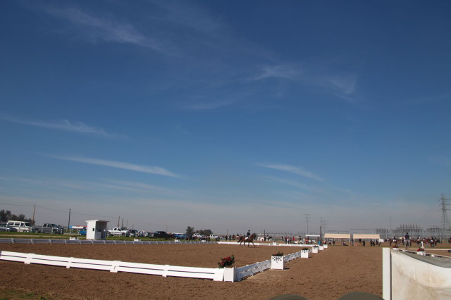 It's a gorgeous day for dressage at Fresno County Horse Park! Photo courtesy Sarah Moseley.