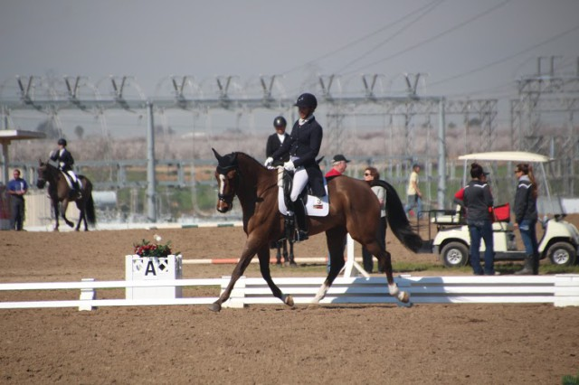 Tamie Smith piloting Peggy Moore's Lagos Star in the 2* division. Photo courtesy Sarah Moseley.
