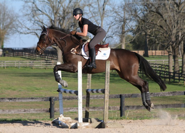 Kathryn Schick and Supernova jumping in the Sinead Halpin clinic at Antebellum Farm. Photo by Samantha Clark