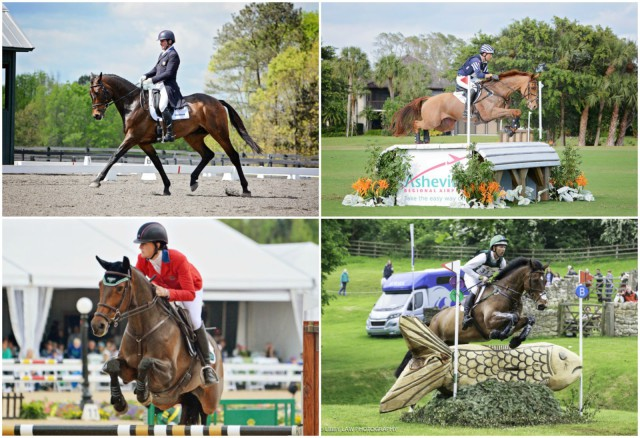Team USA! From top left clockwise: Phillip Dutton and Fernhill Cubalawn (photo by Jenni Autry); Boyd Martin and Blackfoot Mystery (photo by Jenni Autry); Lauren Kieffer and Veronica (photo by Jenni Autry); Clark Montgomery and Loughan Glen (photo by Libby Law Photography).