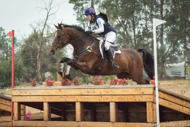 Bonner Carpenter wins the Copper Meadows CIC1* on Get Busy. Photo by Sherry Stewart.