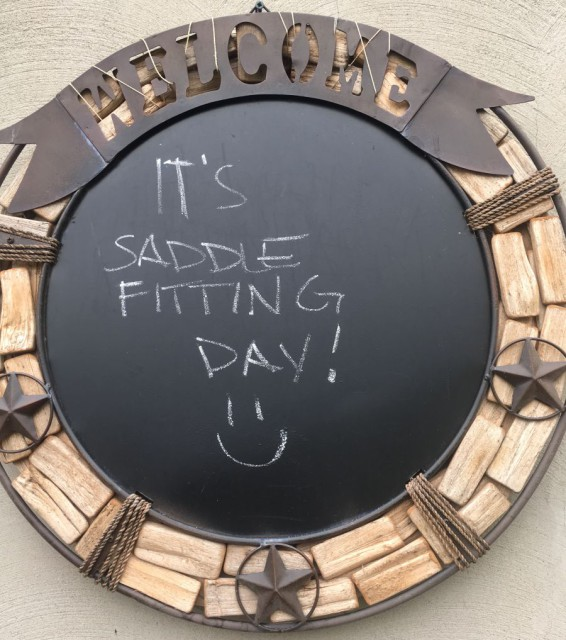 saddle fitting day #teamwool #teamfoam