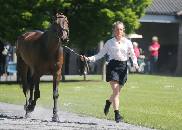 Ireland's Camilla Speirs with Portersize Just a Jiff. Photo by Lorraine O'Sullivan, courtesy of Tattersalls International H.T.