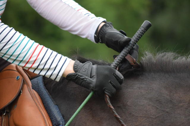 And I've been wearing the X Country gloves. And wearing them. And wearing them some more. For cross country riding. Trail riding. Even for ring work. After all of that wear and abuse, they still have worn so well and still look fantastic. Photo by Lorraine Peachey.
