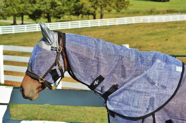 The Fly Mask with Ears is incredibly soft around the top of the head, the ears, and the nose, but has rip-stop technology to stay durable. Photo by Kate Samuels.