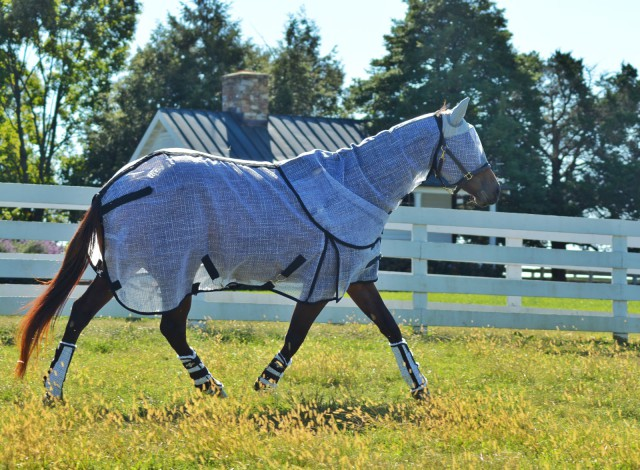 """Rescue horse """"Val"""" is modeling her Professional's Choice Fly Sheet with Neck Cover, Fly Mask with Ears, and Fly Boots! Photo by Kate Samuels."""