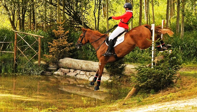 David Doel competing at France's Haras du Pin two-star, riding MocklersHill Buster. Photo by Reybridge Eventing.