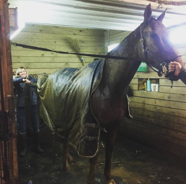 When the baby horse gives the trainer the gift of being a pig pen for Christmas. Photo by Bryn Byer.