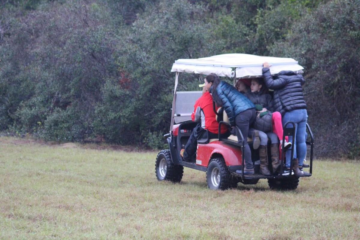 The BDJ crew follows Kathleen and Reggie on cross country. Photo courtesy of John Clarke.