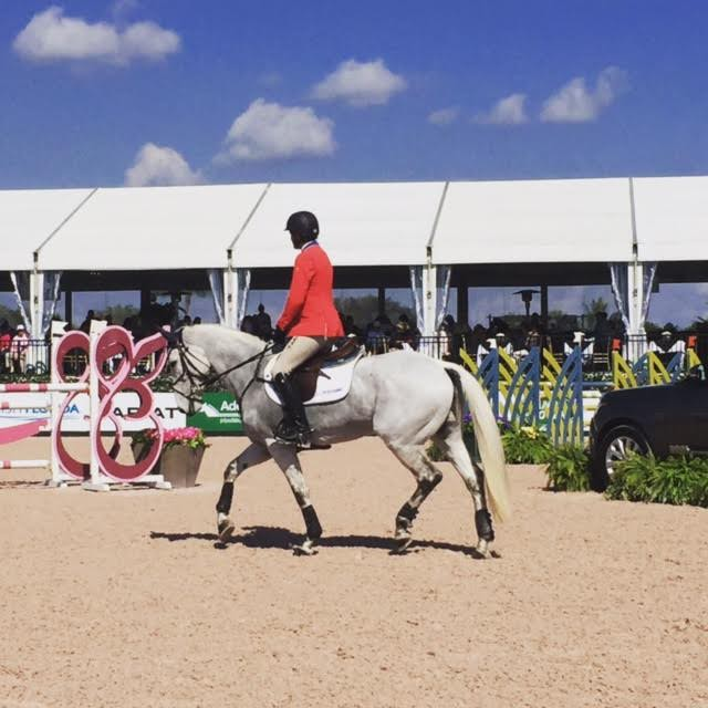 Boyd and Welcome Shadow trot into the ring. Photo by Brooke Schafer.