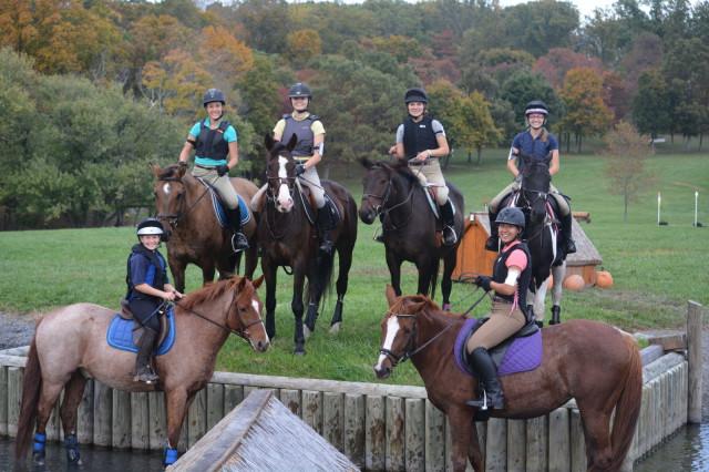 Photo courtesy of Julie Hagen via Sport Horse Nation.