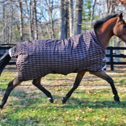The Horseware Rhino Wug features their patented front leg arches to allow for freedom of movement. Photo by Kate Samuels.