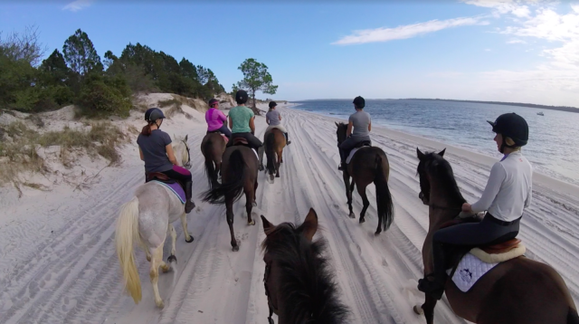 Screenshot showing the whole Nashville, TN, crew who recently enjoyed an outing at Amelia Island.
