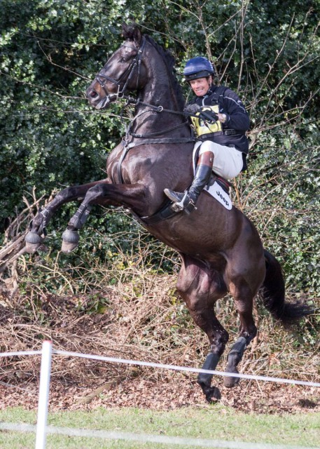 'My Lucky Day', one of William Fox-Pitt's rides at Tweseldown earlier this week, seems to have gotten wind of this whole