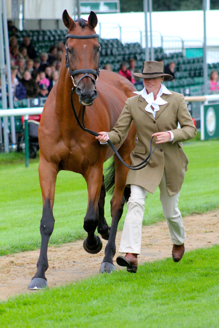 Jeanette Brakewell and Chill Out Bob at Burghley 2012. Photo by Samantha Clark.