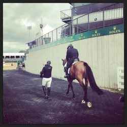 Kathleen Murray and Ballynoe Castle RM head into the ring. Photo via Maralee Paul on Instagram.