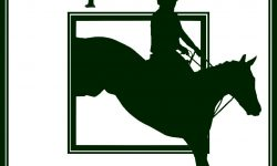 Eventing news eventing nation three day eventing news results videos and commentary for Craigslist lima farm and garden