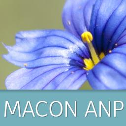 Macon anp avatar 256x256