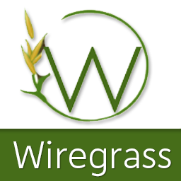 Wiregrass avatar 256x256