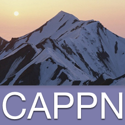 Cappn avatar