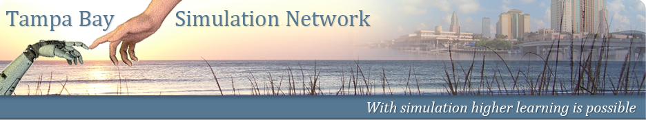 Tampa bay simulation network12
