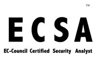 ECSA Certified