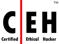 CEH Certified hackers