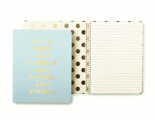 Kate Spade New York Spiral Notebook, Quick & Curious (blue)