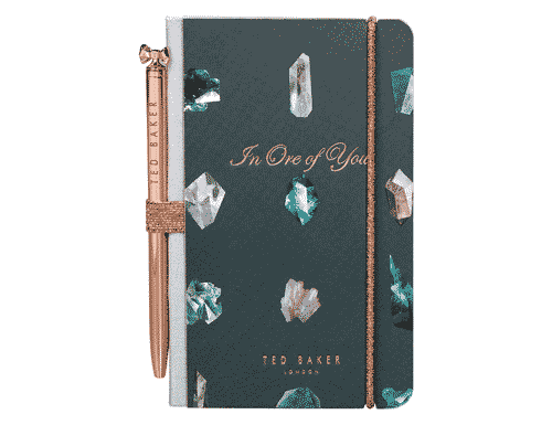 Ted Baker London Mini Notebook & Pen Linear Gem
