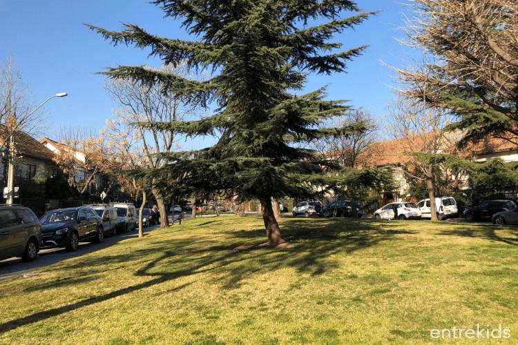 Plaza Los Estanques