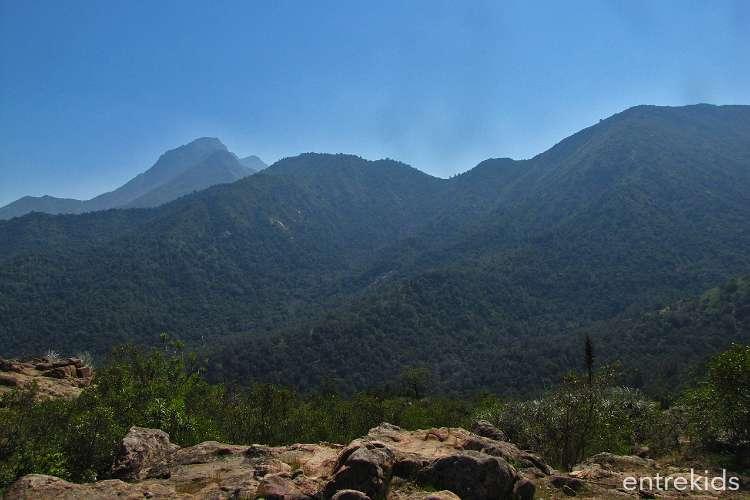 Trekking familiar en Quebrada el Manzano