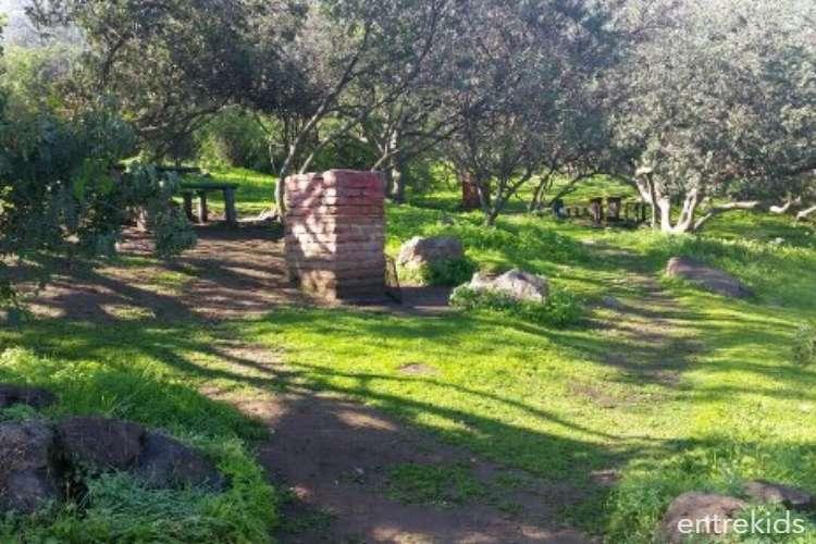 Tarde de Picnic en Parque Mahuida