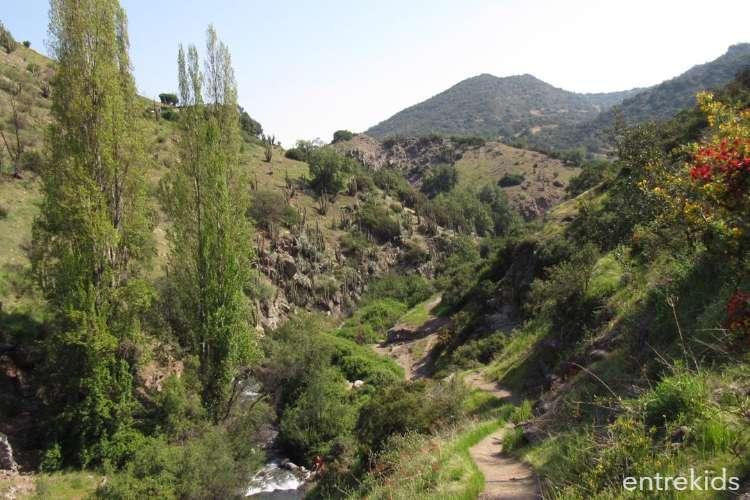 Relajo en el Santuario de la Naturaleza El Arrayán