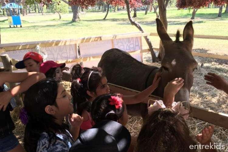 Animal Park 3 en Parque Padre Hurtado