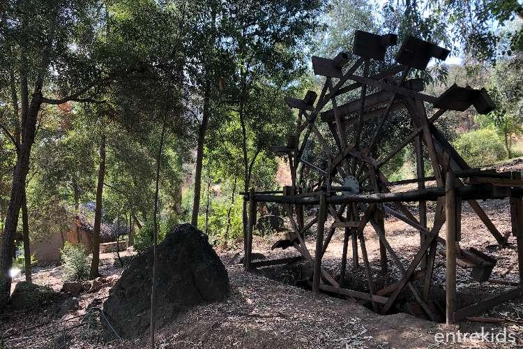 Trekking en Bosque Santiago