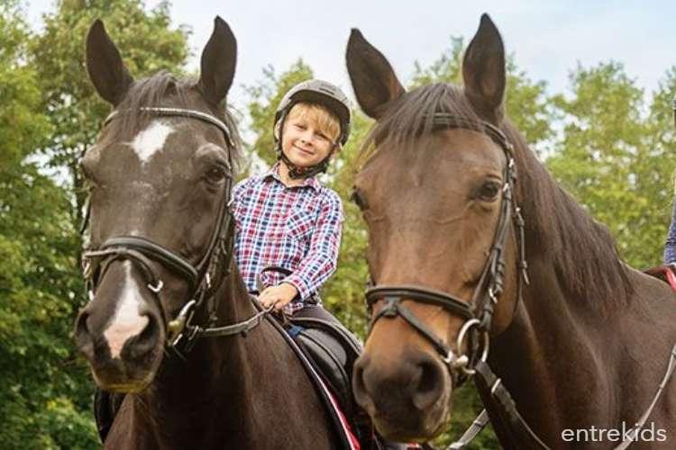4 Clases de equitación para niños