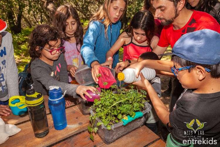 Aventura Familiar - Un taller para padres e hijos