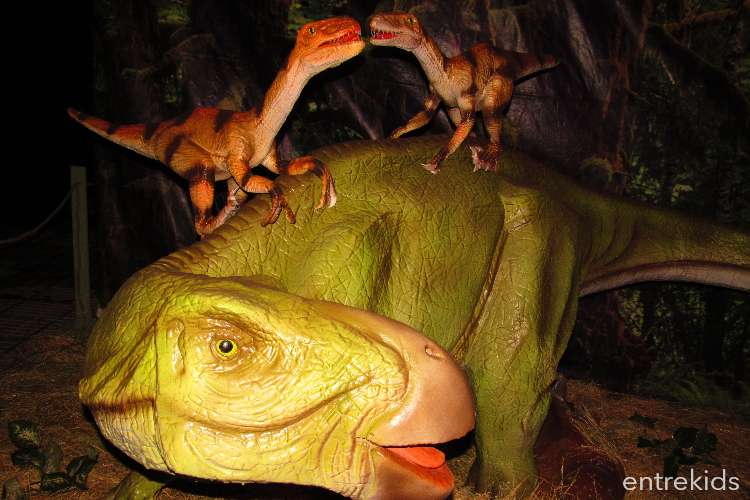 Expo Dinosaurios 2019