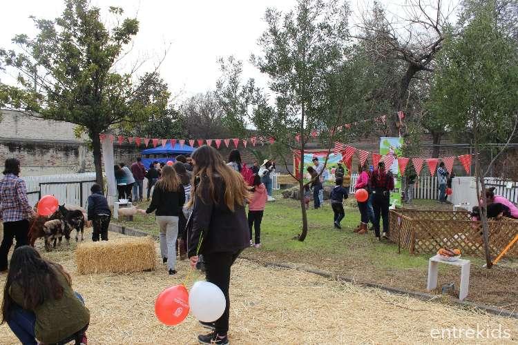 La Granja de Bernardo - Otoño en las Plazas