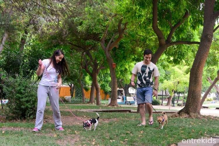 Una mañana para las mascotas en el Parque Bustamante