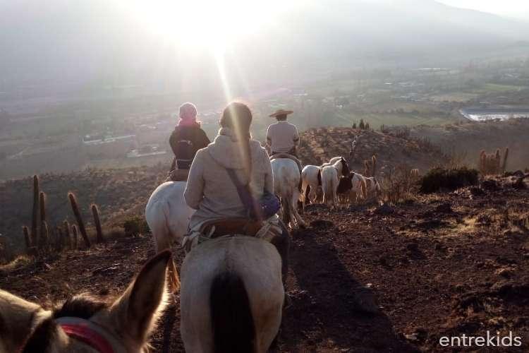Vive una aventura campestre con tu familia en el Valle de Putaendo