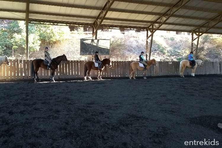 Winter Camp en la Escuela de Ponies Internacional