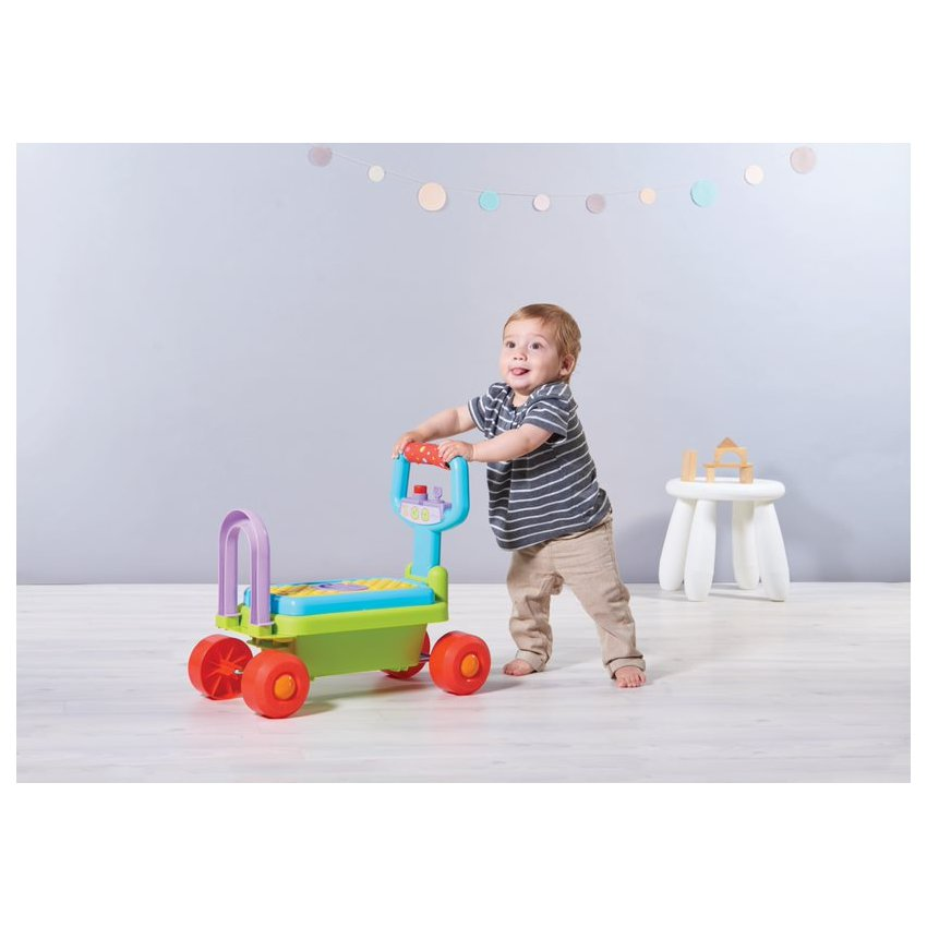 Juguete Developmental Walker - Auto 4 En 1