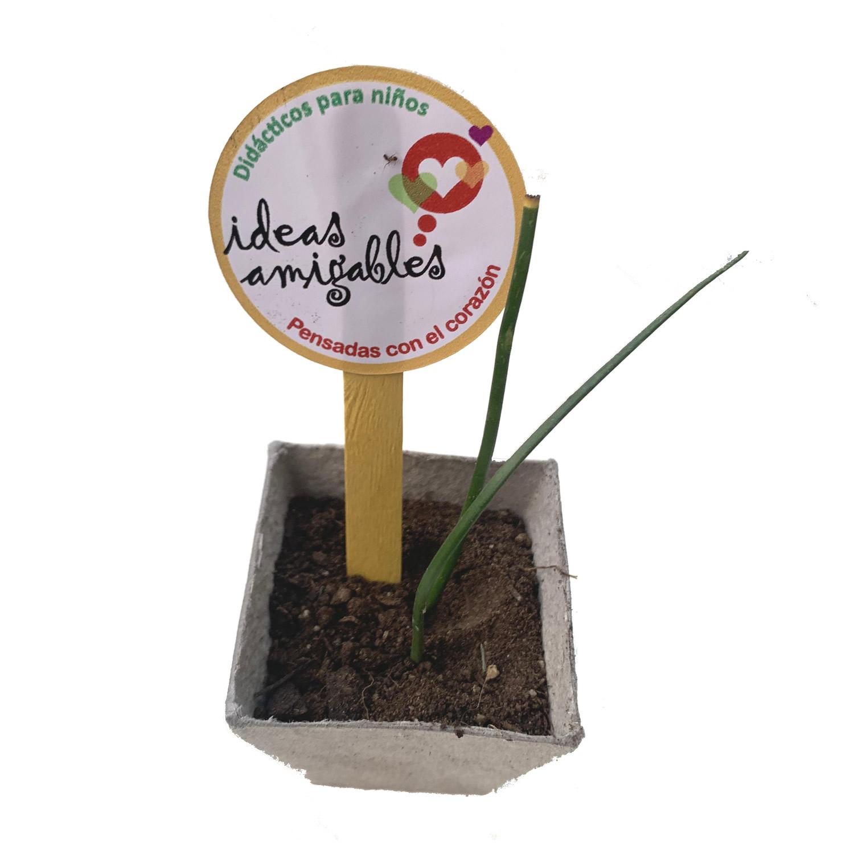Eco Valijita Didáctica para Leer, Jugar y Plantar