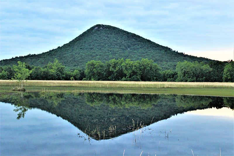 Pinnacle Mountain State Park